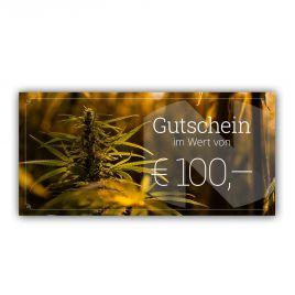 Gutschein im Wert von EUR 100,-