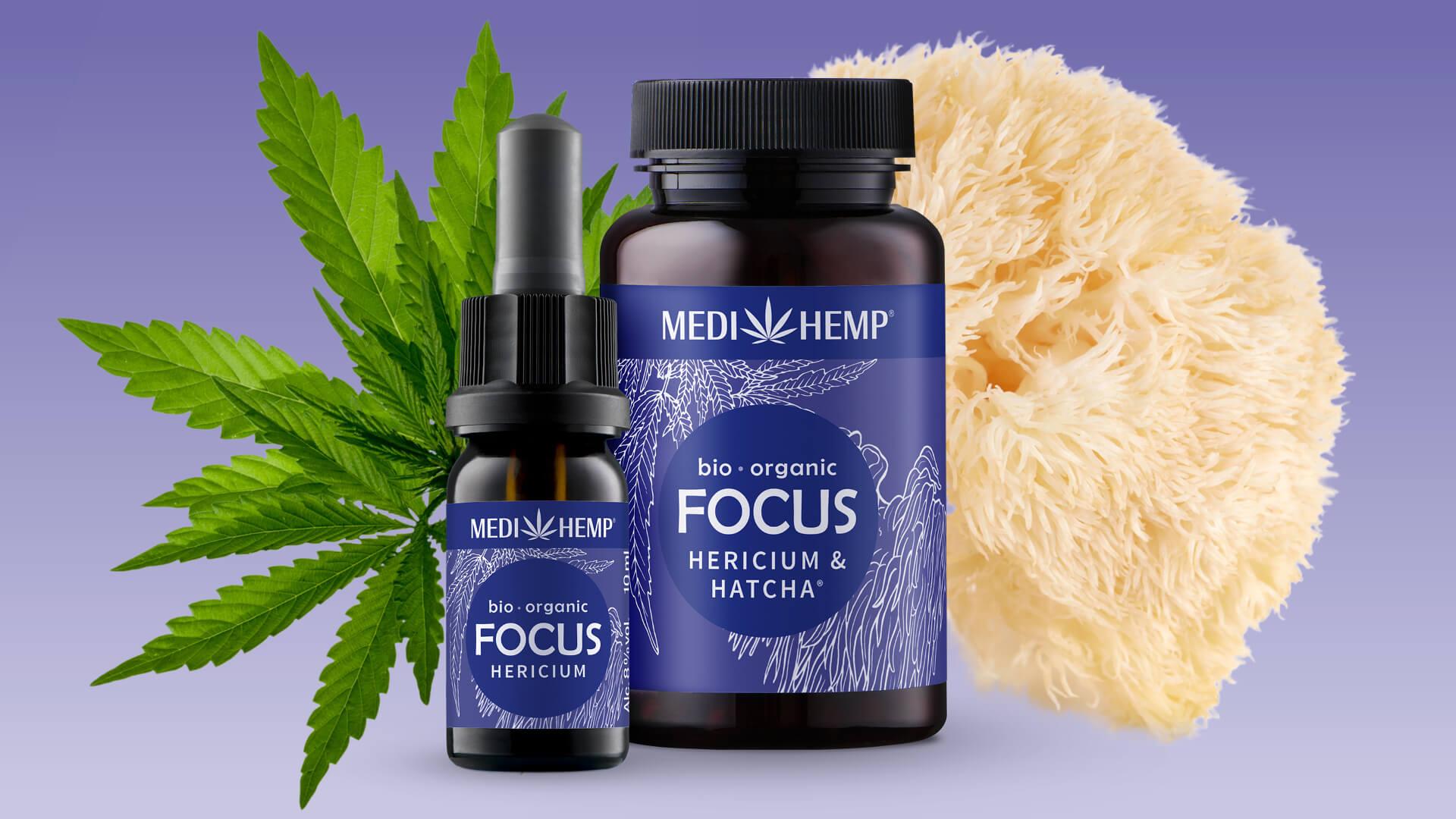 Hericium: Der Pilz, der starke Nerven behält.